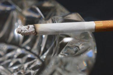 【2020年】日本たばこ産業株式会社(JT)ってどんな会社?【就活生必見/企業研究】
