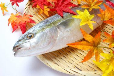 【2021年】日本水産(ニッスイ)ってどんな会社?【就活生必見/企業研究】